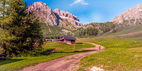 dolina, Europa, Italia, Włochy, Dolomity, SellaRonda, rower górski, rowery, wycieczki, podróże, góry, droda leśna, dróżka, serpentyny, skały, łąka, las, koła, niebo, chmury, Europe, Italy, Italy,