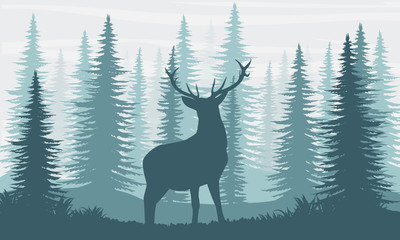 Silhouette. A deer with large branching horns in the fir forest.