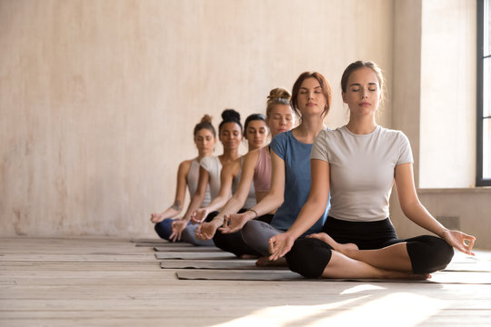 Calm female yogi practice yoga in lotus position together