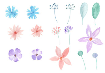 Watercolor set of flowers and leaves