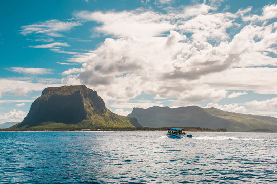 Swimming with dolphins in Le Morne Mauritius