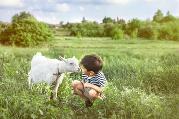 A little boy wearing  stripped vest squats   talks to  goat on a lawn on a farm They look at each other attentively. Fototapete