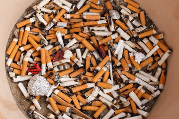 Many Cigarette Butts in a Pile