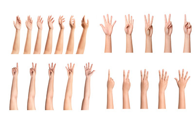Set of woman hands isolated on white background Wall mural