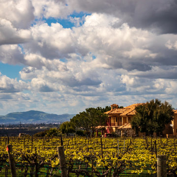 Grand Home with vineyards in Livermore area with clouds and blue sky
