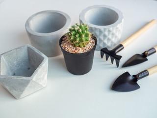 Geometric concrete planter with cactus plant and garden tool set