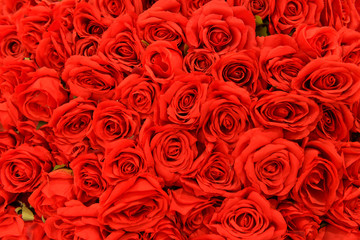 Romantic red natural roses background