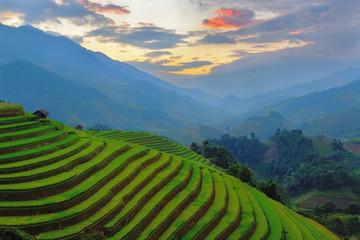 Tuinposter Rijstvelden Rice field at Mu Cang Chai, Vietnam