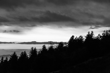 Trees silhouettes against the sky at dusk, with mountains layers in the background
