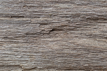 Very Old Wood Background, closeup. wood texture . old and very aged wood texture close up. backgrounds, texture is very old wood in the process of prolonged natural decomposition and weathering.