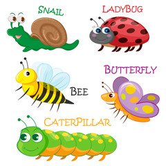 Collection of cartoon spring insects