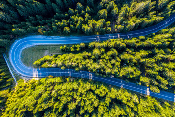 Aerial view of green pine forest and a road