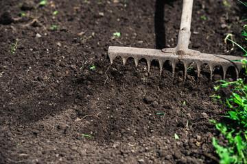 man loosens the earth with a rake