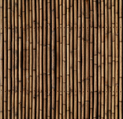 Bamboo sticks texture. The elements from top match with the bottom