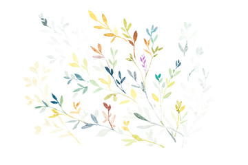 Watercolor painting of leaves on white background, hand draw.