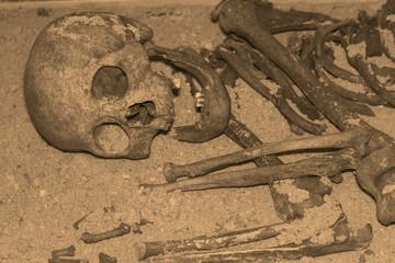 ancient human skeleton. archaeology, antiquity. era.