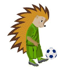 Hedgehog football player. Vector illustration.