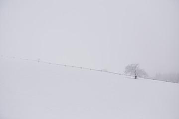 Fototapete - Snow falling on a scenic landscape in winter