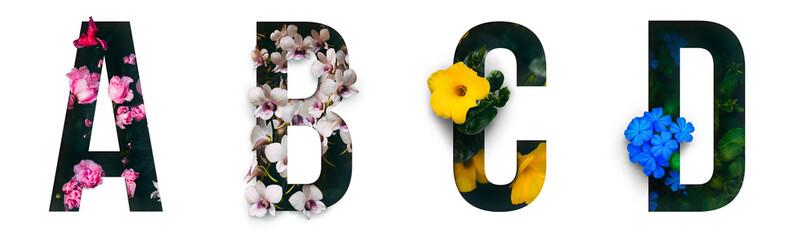 Obraz Flower font Alphabet a, b, c, d made of Real alive flowers with Precious paper cut shape of letter. Collection of brilliant flora font for your unique decoration in spring, summer & many concept  - fototapety do salonu