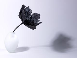nature morte à la fleur noire