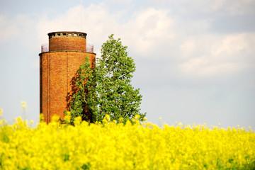 Wasserturm und Rapsfeld
