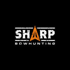 Sharp typography logo design with Arrowhead