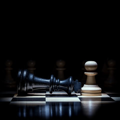 a chess pawn plunged the king