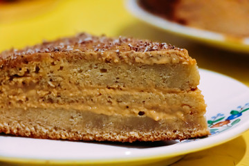 Honey cake on a plate on a yellow background