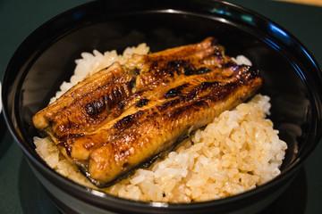 Bowl of Eel on rice in Japan