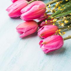 Beautiful tulips on pastel green background