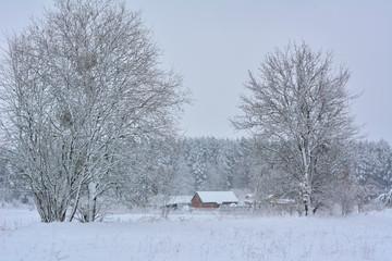 Zima w Polsce. Warmia - fototapety na wymiar