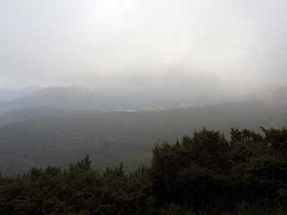 Mountains and green hills in the fog on the top of Hoverla in the Carpathians