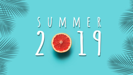 Summer 2019 concepts with text and red orange fruit on blue background.holiday idea