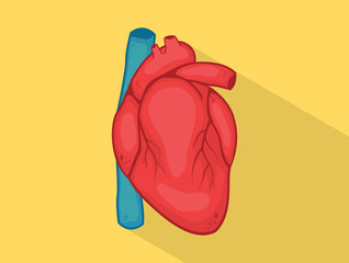 human heart with strong yellow color and red with long shadow style isolated - vector