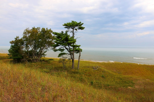 Kohler-Andrae State Park,Sheboygan area,Wisconsin, Midwest USA.Landscape with view on the lake Michigan from hiking trail through the sand dunes.Light mist over the water. Wisconsin nature background.
