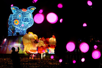 Woman poses for pictures in front of an pig-shaped installation at a lantern fair on the second day of Chinese Lunar New Year of the Pig, at Wuhan Garden Expo
