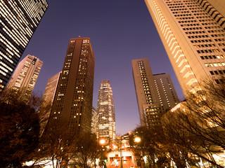 Fototapete - 東京都 夜の新宿高層ビル街