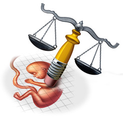 Abortion Law Concepts