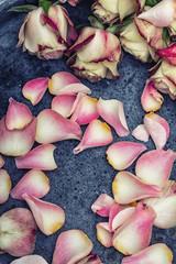 Erholung Hintergrund Wellness Rosenblüten auf Stein