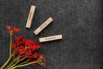 Object shooting of a flower and beautiful inscriptions on cubes. Layout items.