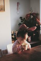 ホットミルクとクリスマス