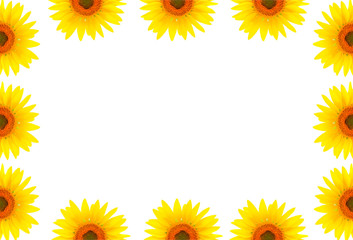 Blank white page decorated with sunflowers