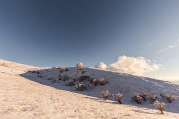 Subasio mountain (Umbria, Italy) in winter, covered by snow, with plants