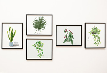 Collection of leaves framed on a wall
