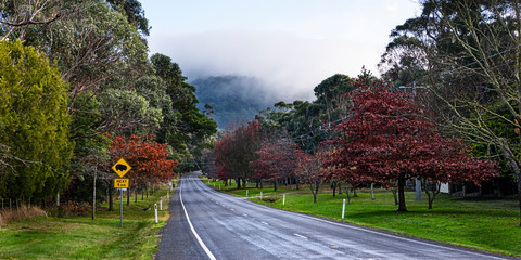 Road to Mount Macedon