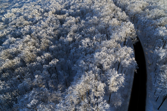drone point of view with white forest in winter