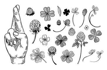 Crossed fingers and a four-leaf clover set. Symbols of good luck. Engraving style. Vector outline isolated on white background Wall mural