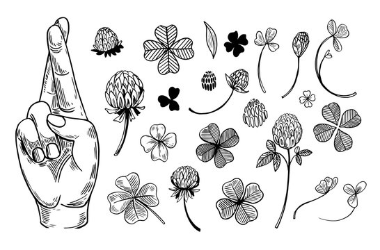 Crossed fingers and a four-leaf clover set. Symbols of good luck. Engraving style. Vector outline isolated on white background