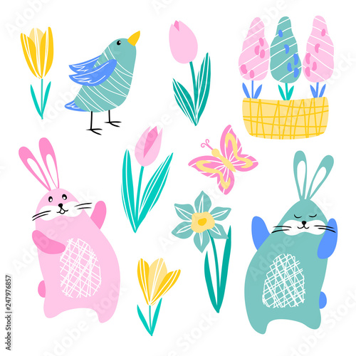 Vector Rabbit Hare Butterfly Bird Daffodil Tulip Crocus Hyacinth