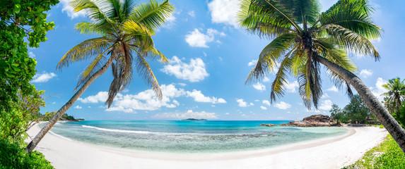 Tropischer Palmenstrand in der Südsee mit Blick aufs Meer